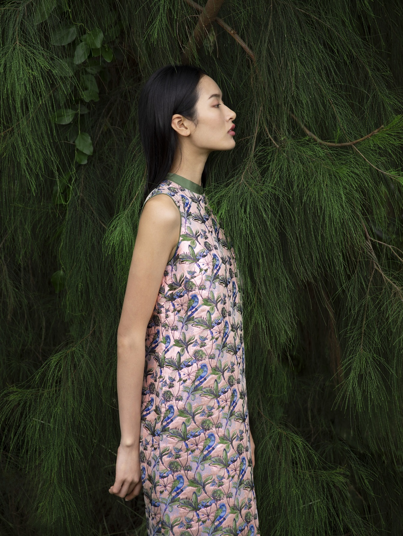 jacquard bird dress