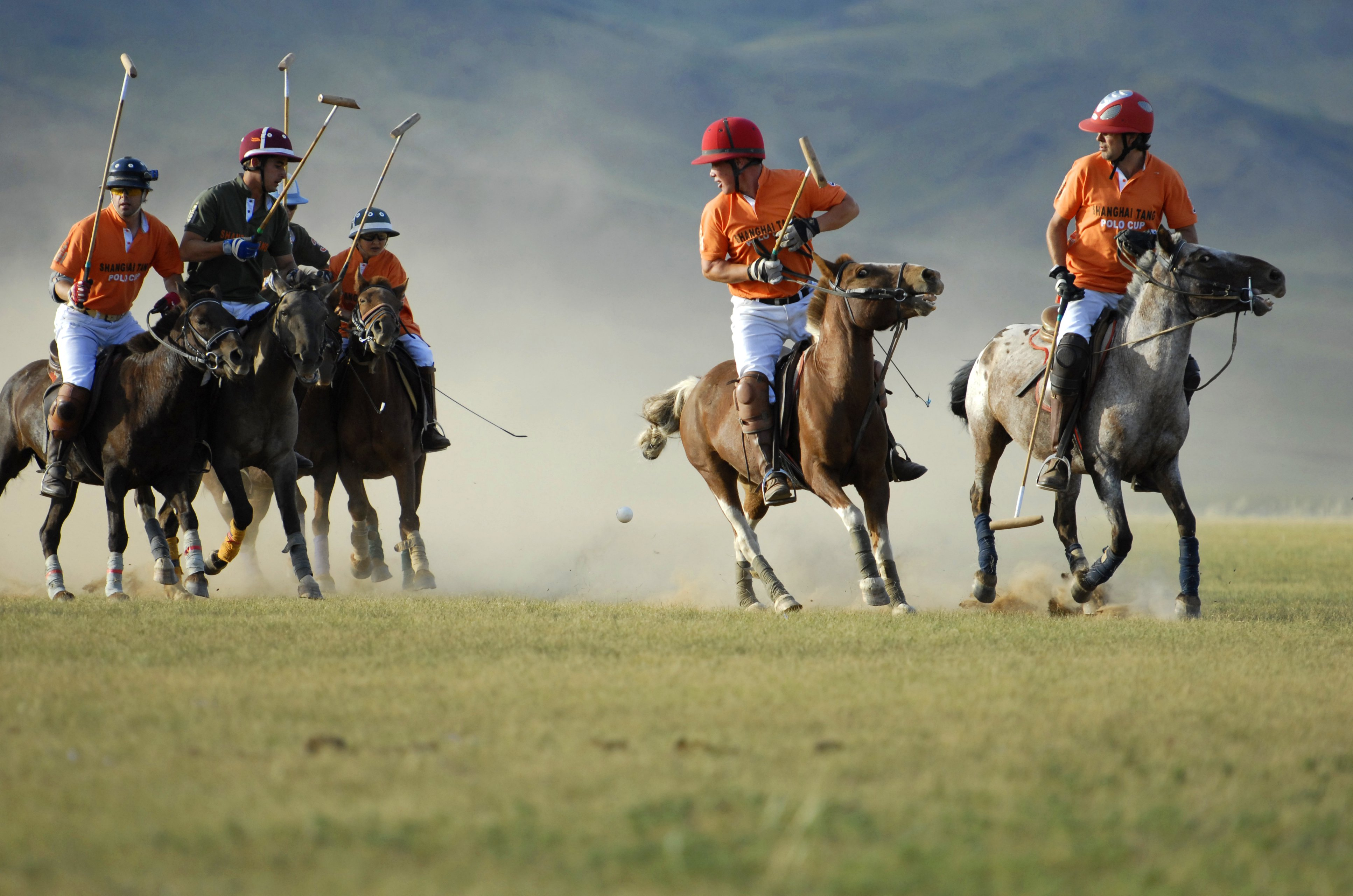 Rebirth of Polo in Mongolia