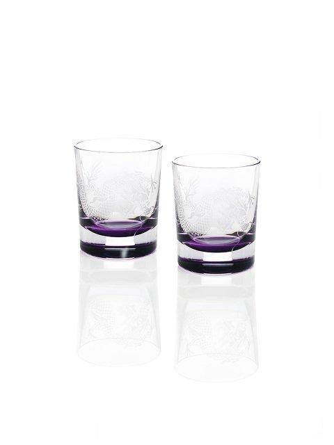 Colour Dragon Whisky Glasses (Set of 2)