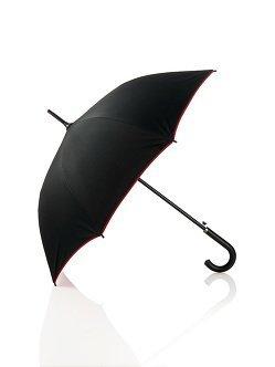 Dragon Long Umbrella