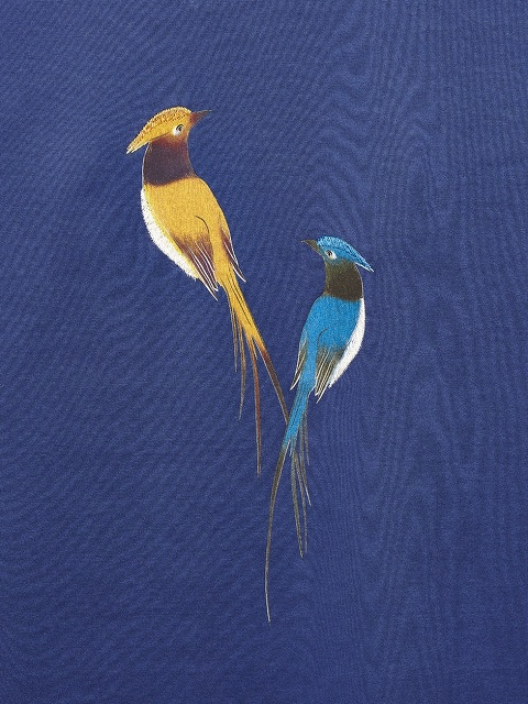 Bird Print and Embroidery T-shirt
