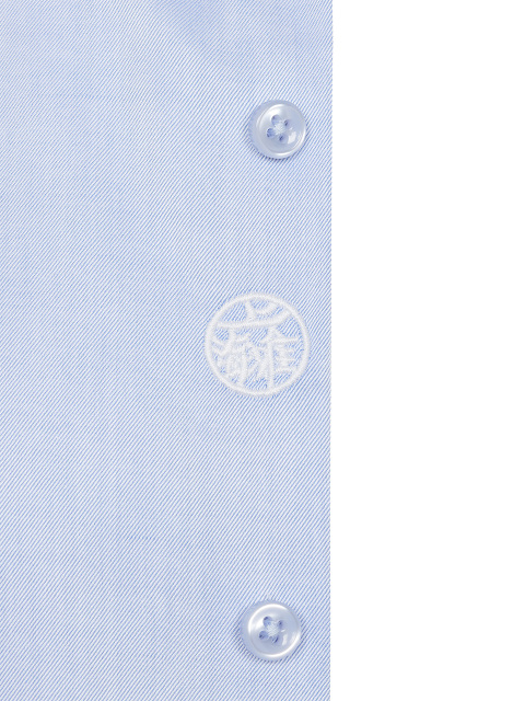 Hidden Motif Embroidery Cotton Twill Shirt
