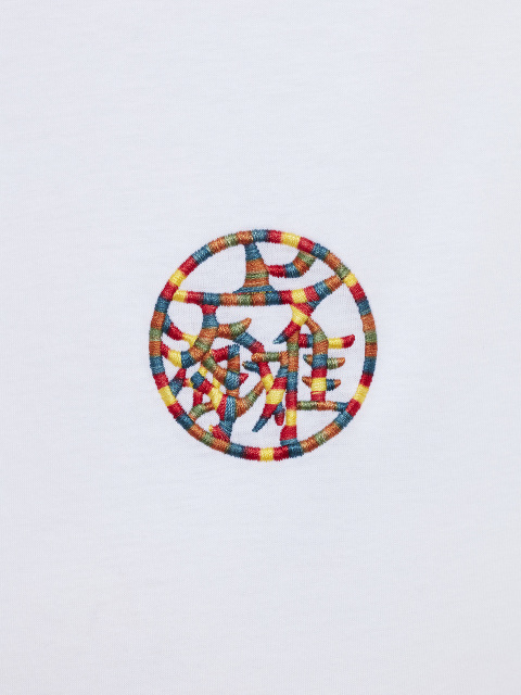 Multicolour 'SHT Motif' Embroidery T-shirt