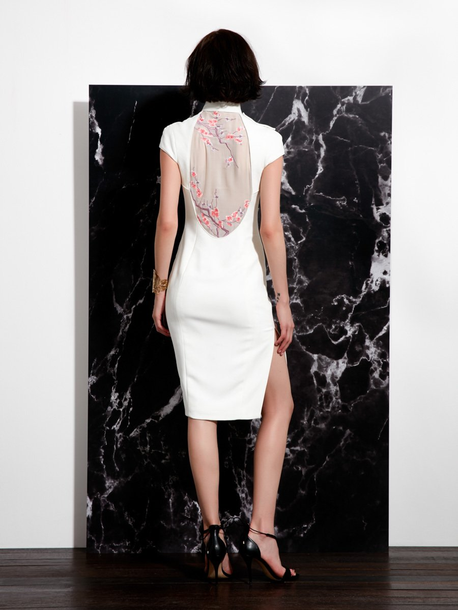 Qipao with Embroidery